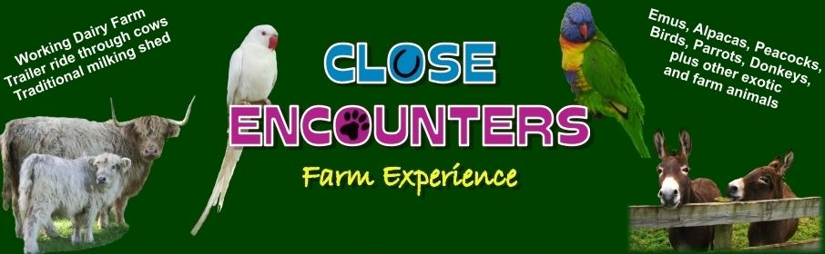 close encounters logo (1)